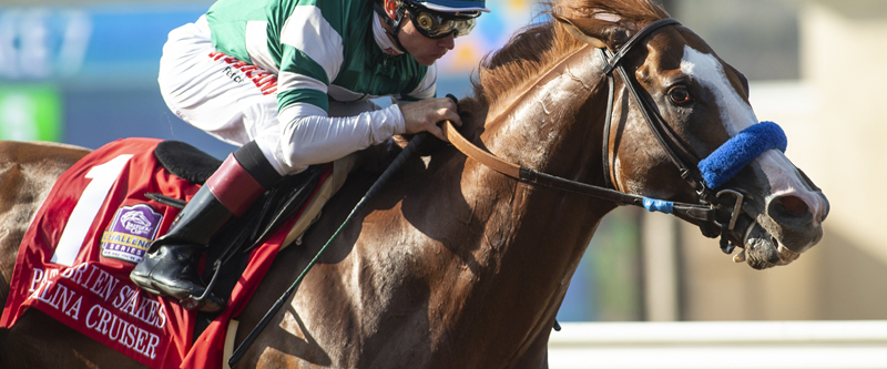 Photo of Catalina Cruiser Faces Six in Pat O'Brien Stakes Saturday