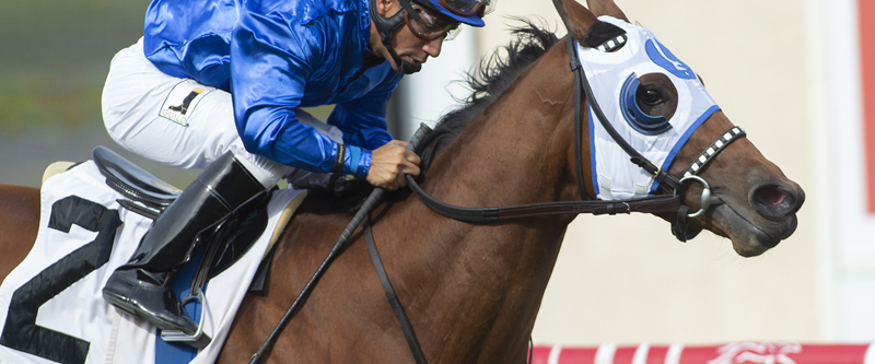 Photo of Alms Scores Easily in Jimmy Durante Stakes