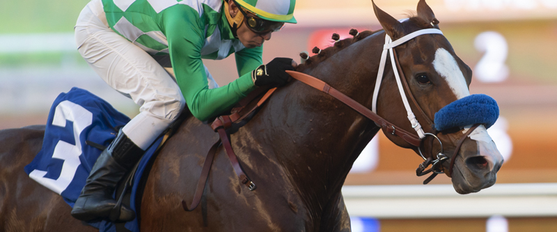Photo of Fashionably Fast Wins Cary Grant Stakes