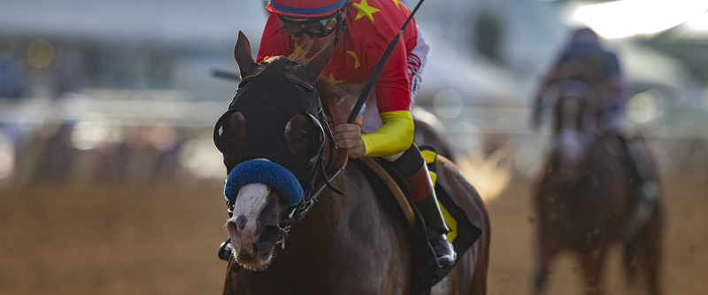 Photo of Improbable Defeats King Jack in Shared Belief Stakes