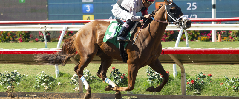 Photo of Leucothea favored in Desi Arnaz Stakes