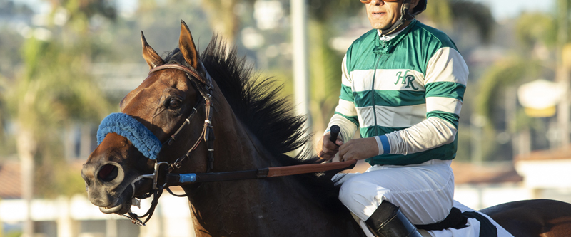 Photo of Lady Suebee Cruises in Tranquility Lake Stakes