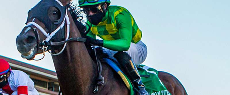 Photo of Classy Arklow Home First Friday in Del Mar's Hollywood Turf Cup