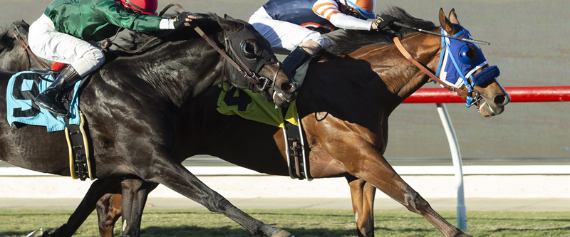 Photo of Beer Can Man Proves Best in C. B. DeMille at Del Mar