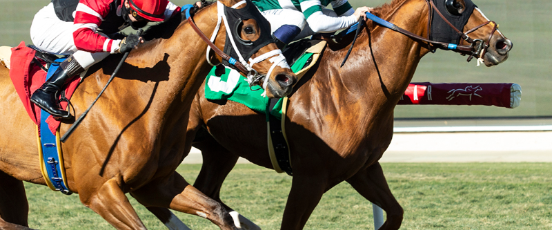 Photo of Chaos Theory Takes Del Mar Feature; Trainer Glatt Scores His 1,000 Win