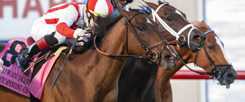 Photo of Domestic Spending Best in Blanket Finish in Del Mar's Hollywood Derby