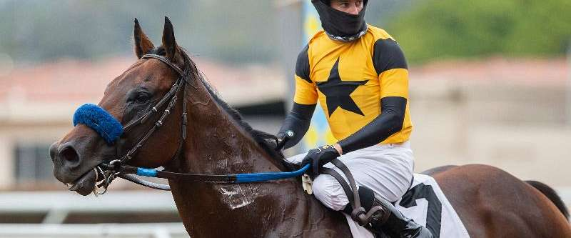 Photo of Galilean Goes for Seventh Stakes in Sunday's Cary Grant at Del Mar