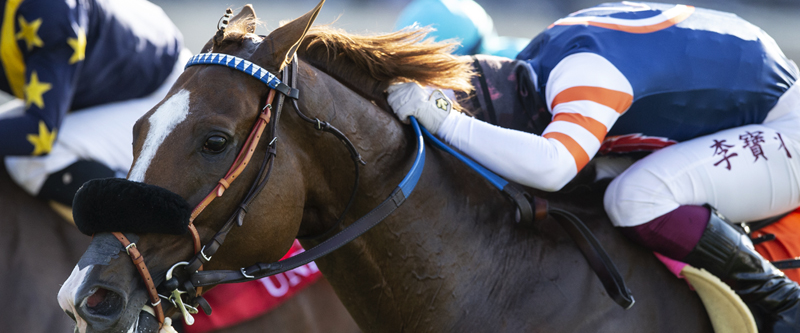 Photo of Red King Upsets United in Saturday's Del Mar 'Cap