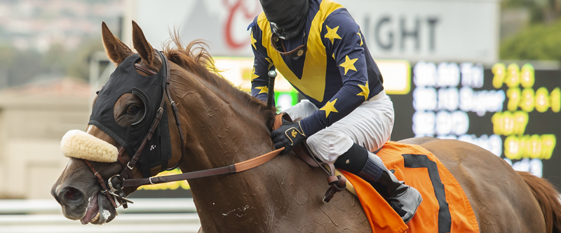 Photo of United Takes on 10 Rivals in Saturday's Del Mar 'Cap