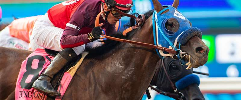 Photo of Dr. Schivel By A Neck Saturday in Grade I Bing Crosby at Del Mar