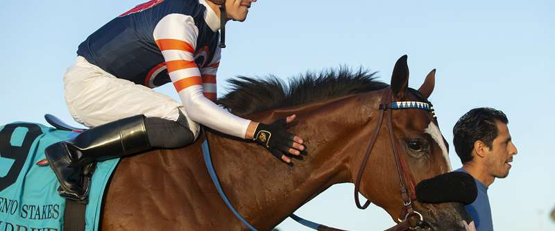 Photo of Grade I Debutante Lures Eight Young Fillies Sunday at Del Mar