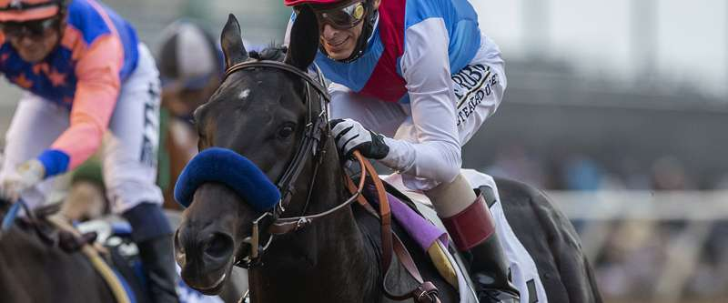 Photo of Derby Winner Medina Spirit Best in Del Mar's Shared Belief Sunday