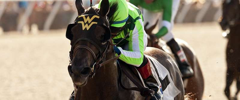 Photo of Sunset Glow Heads Line-Up In San Clemente Handicap