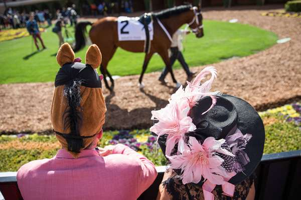 Photo of Limited General Admission Tickets for 2021 Breeders' Cup World Championships at Del Mar to go On Sale Wednesday