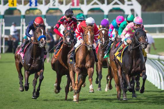 Photo of Del Mar Cancels Thanksgiving Card Due to Inclement Weather; Racing Set for Friday and a Stakes-Packed Weekend