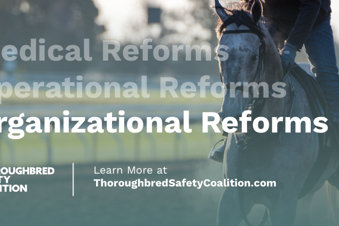 Photo of Leading Thoroughbred Racing Organizations Launch Safety Coalition