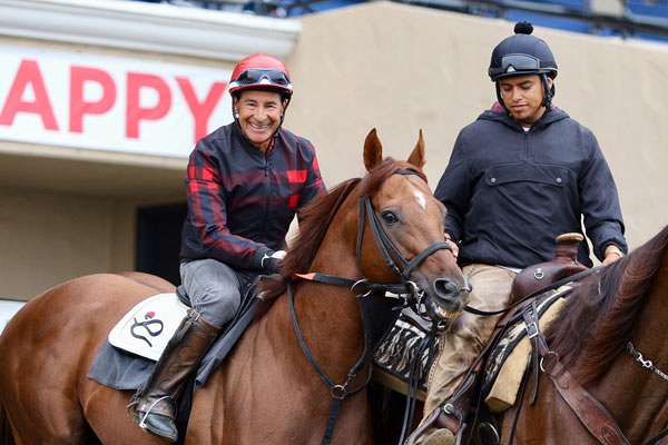 Photo of Stable Notes August 21, 2019