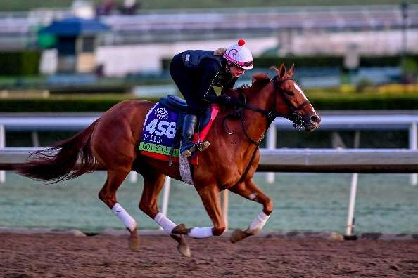 Photo of Stable Notes November 28, 2019