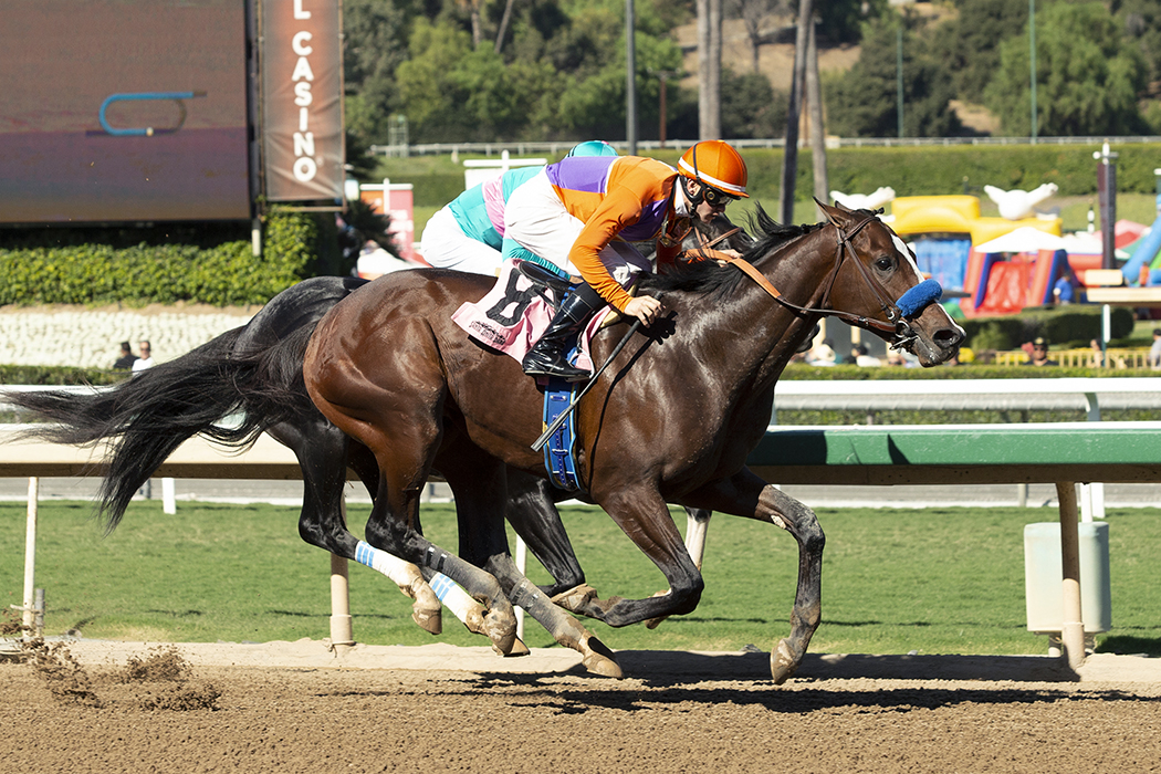 Photo of Bob Hope Stakes Matches Six Talented Two-Year-Olds