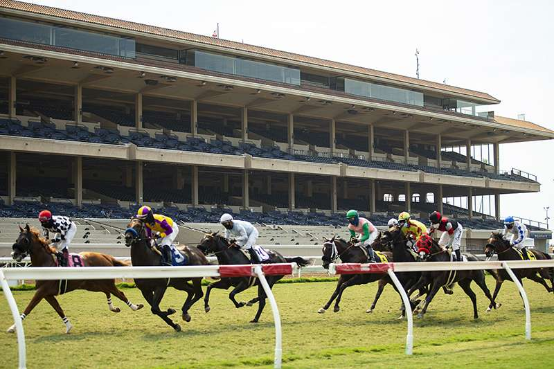 Photo of Del Mar Increases Purses for 21 of 34 Major Summer Stakes in 2021