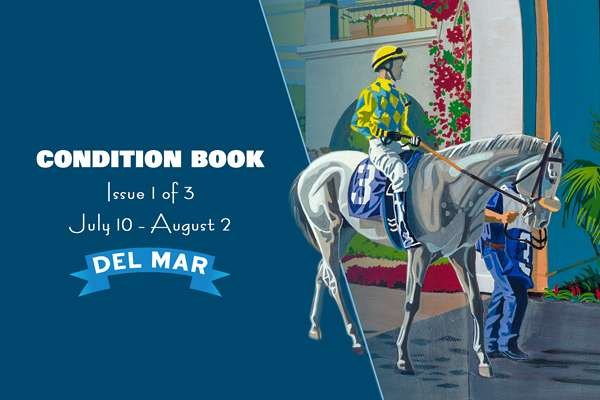 Photo of Del Mar's First Condition Book Now Offered Online
