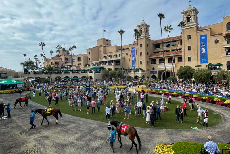 Photo of My Summer at Del Mar: It's All About the People, People
