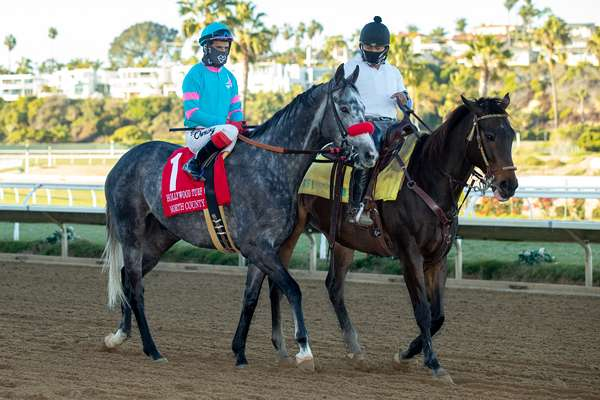 Photo of 10 Try Sunday's California Dreamin'; Superstition One to Beat in Daisycutter