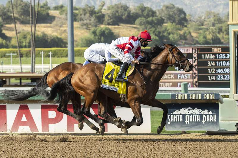 Photo of Royal Ship Looms One to Beat in Saturday's San Diego 'Cap