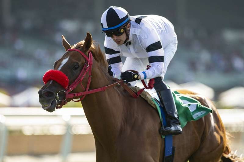 Photo of 'Showtime' Looms Large Sunday in Del Mar's Solana Beach Stakes