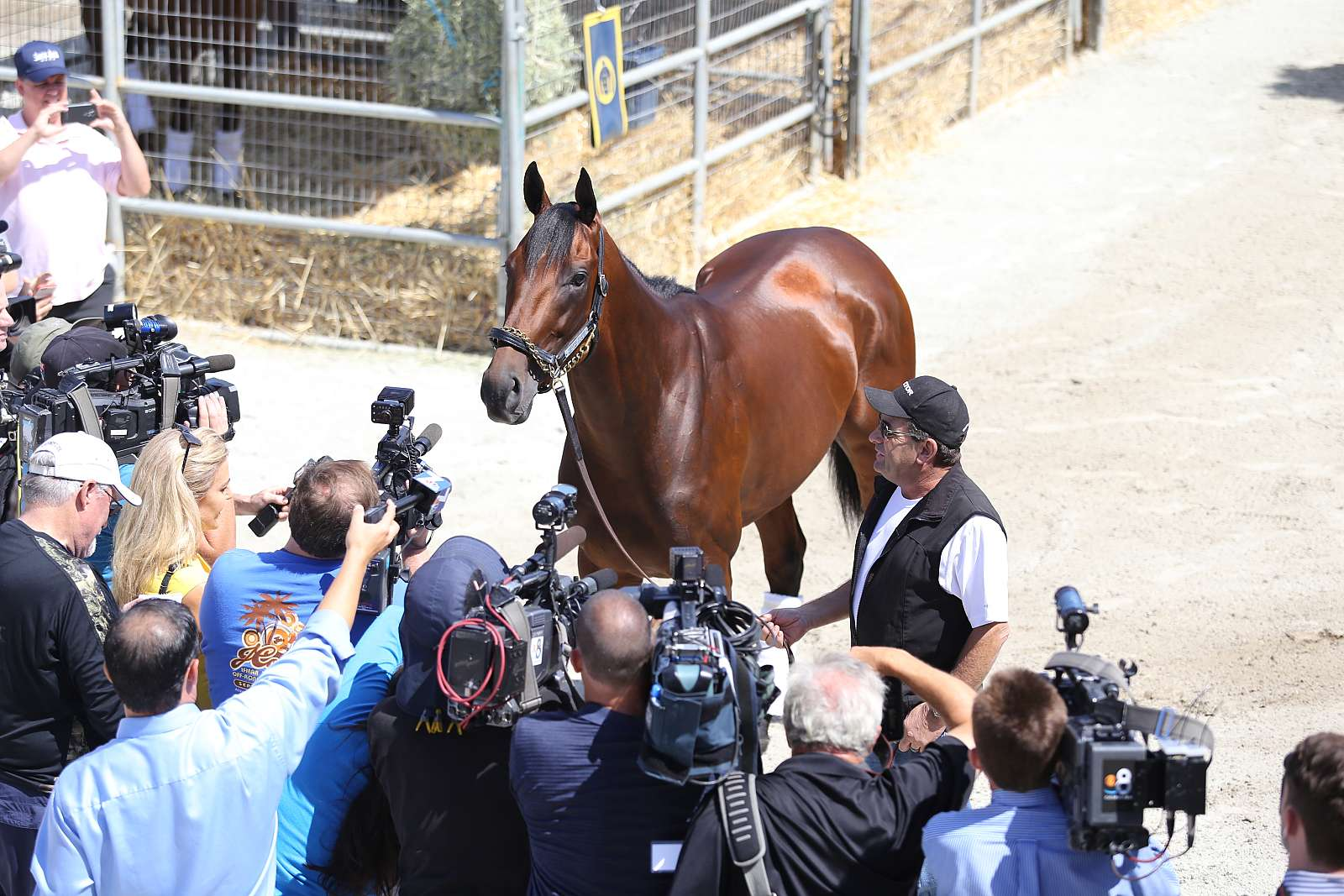 Photo of Stable Notes July 14 2015