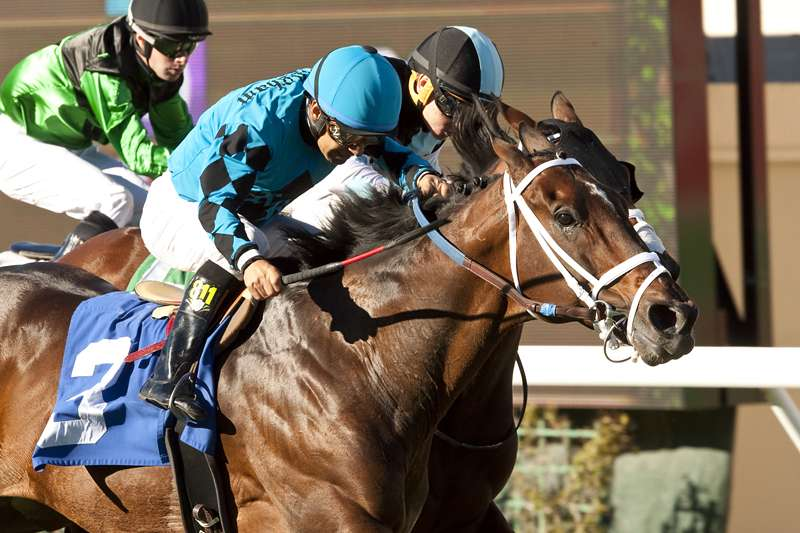 Photo of Finnegans Wake Vs. Midnight Storm In Eddie Read Stakes at Del Mar