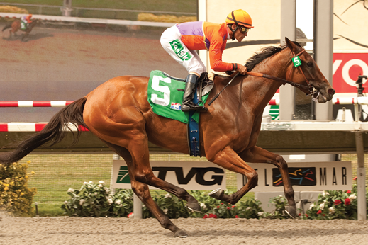 Photo of Beholder Heads Star-Studded Field in Clement L. Hirsch Stakes