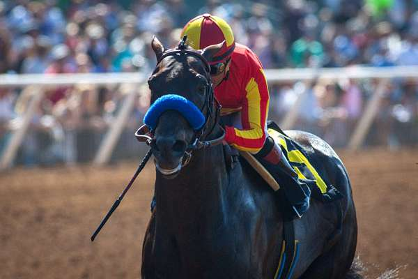 Photo of Gimme Da Lute Romps In Real Good Deal Stakes