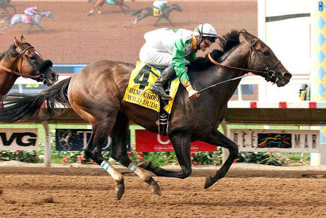 Photo of Wild Dude Upsets Masochistic in Crosby Stakes