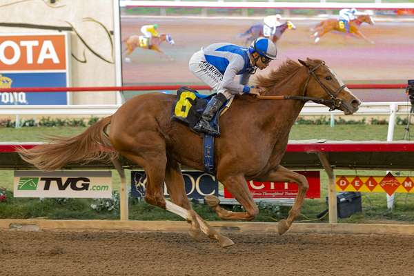 "Photo of Popular ""Ship and Win"" Program in Effect for Fall at Del Mar"