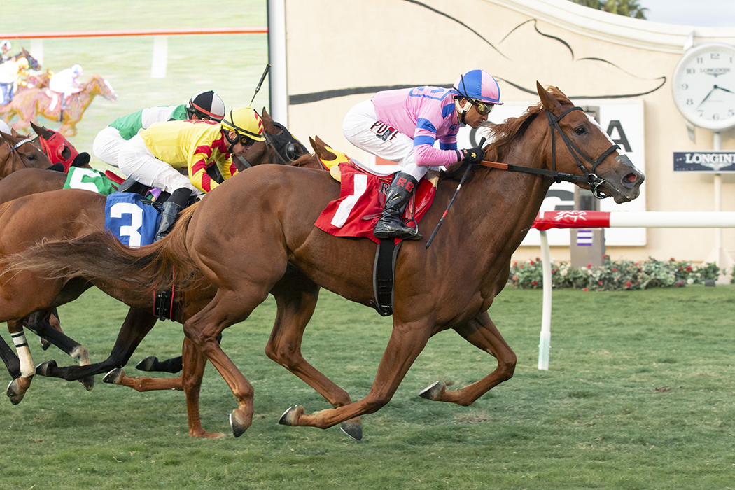 Photo of Doc Yco Cheeks Prevails in Del Mar Feature