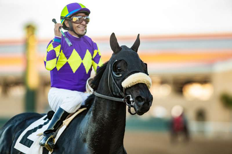 Photo of Midcourt a Standout Saturday in Del Mar's Native Diver Stakes