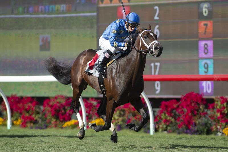 Photo of Smooth Like Strait Wire-to-Wire Winner of DeMille Stakes
