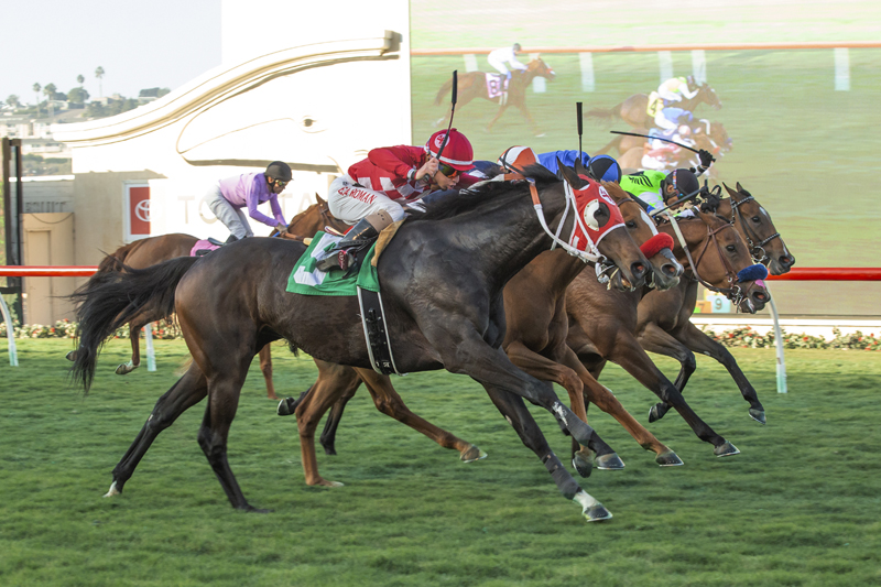 Photo of Wicked Old Fashion Surprises in Kathryn Crosby Stakes