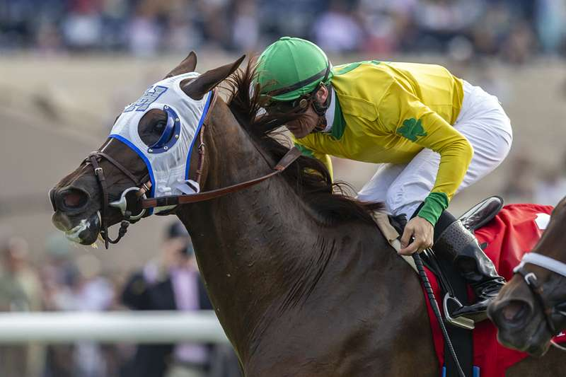 Photo of Vasilika Noses Out Juliet Foxtrot in Mabee Stakes