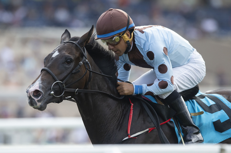 Photo of Irish-Bred Yesterdayoncemore Upsets in Juvenile Fillies Turf