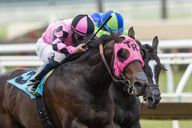 Photo of Loud Mouth Pulls a Surprise in Cary Grant Under Cedillo
