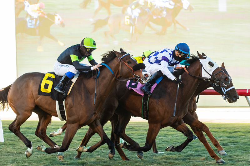 Photo of Veteran Musawaat Up By Nose in Blanket Finish at Del Mar