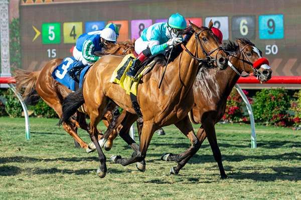 Photo of Favored Orglandes Powers Late to Take Thursday's Red Carpet