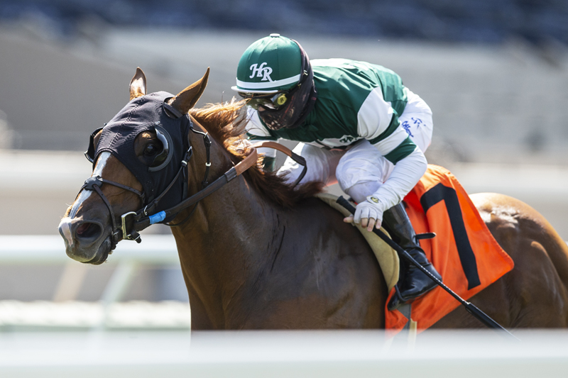 Photo of Chaos Theory Along In Time to Capture Del Mar's Green Flash