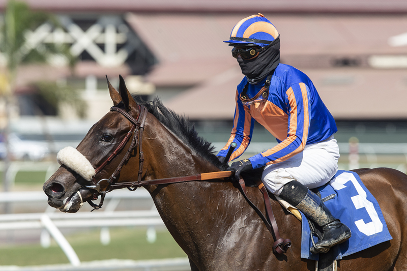Photo of Harvest Moon Proves Best in Torrey Pines at Del Mar