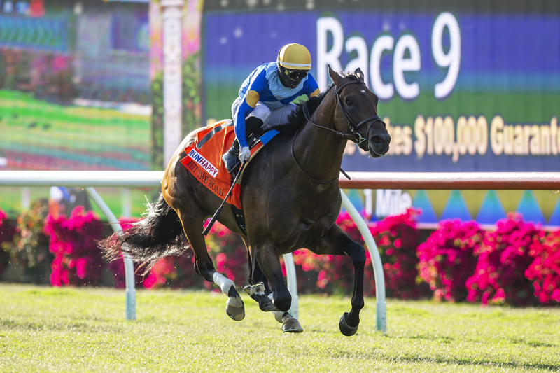 Photo of Hit the Road Takes Runhappy Oceanside Under Rispoli as Del Mar Season Opens