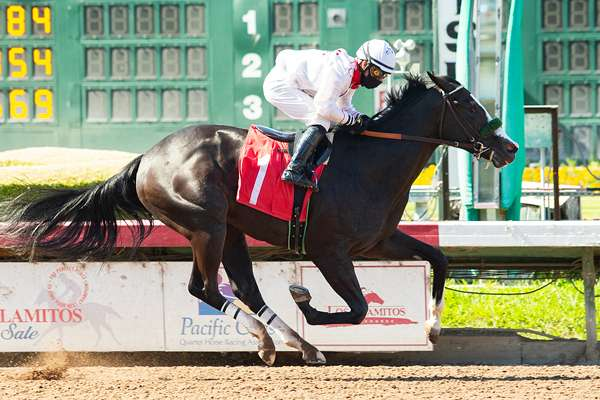 Photo of Seven To Go in CTBA Stakes Saturday; I'm So Anna Appears Solid Choice
