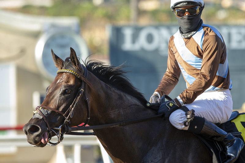 Photo of Prat Says He's Back at Del Mar With Four Wins, Two in Stakes
