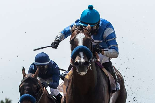 Photo of Thousand Words Pulls Upset in Del Mar's Shared Belief